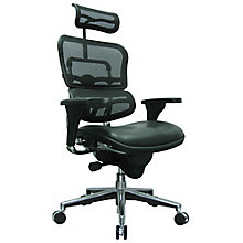 Ergohuman Mesh Back Leather Seat Executive Chair with Headrest, 8808236