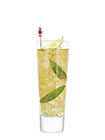 Image for cocktail Gold & Ginger
