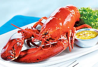 Steamed lobster with herb and pastis butter