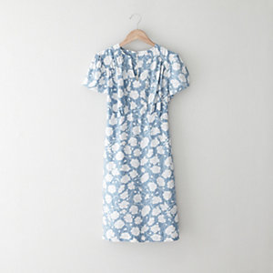 Little Eve Dress