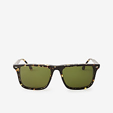 TRIBECA TORTOISE WARREN SUNGLASSES
