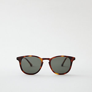 WILLARD SUNGLASSES - CLASSIC TORTOISE