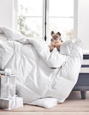 GlucksteinHome European Down Duvets 70% off Today Only @ Hudson's Bay