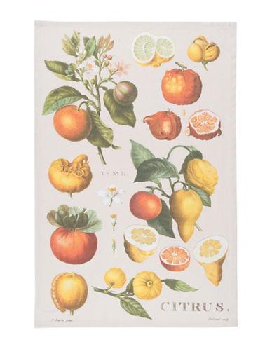 Now Designs Citrus Botanical Cotton Dishtowel-MULTI-Kitchen Towel