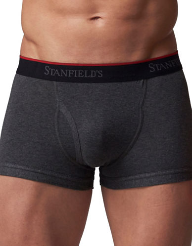 StanfieldS 2 Pack Cotton Stretch Trunks-GREY-XXX-Large