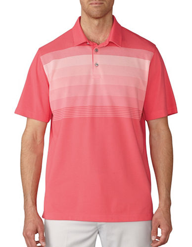 Ashworth Gradation Stripe Pique Polo-PINK-Large