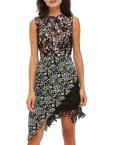 Topshop Garden Lace Sheath Dress-MULTI-UK 6/US 2