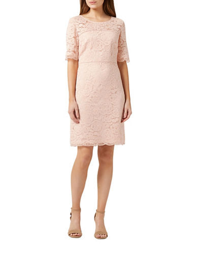 Precis Petite Fleur Lace Shift Dress-PINK-UK 16/US 14