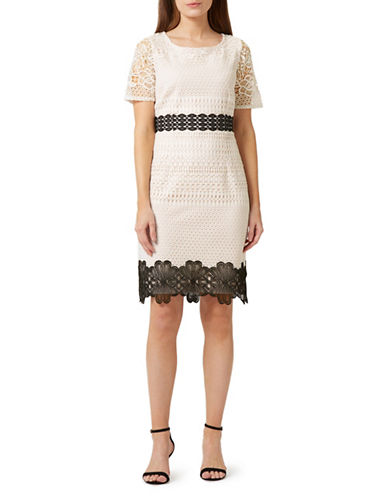 Precis Petite Lara Lace Dress-BLACK-UK 16/US 14