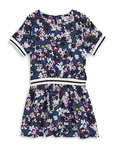 Splendid Drop-Waist Floral Dress-FLORAL PRINT-3X