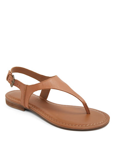 Aldo Bloor Flat T-Strap Sandals-BROWN-6.5