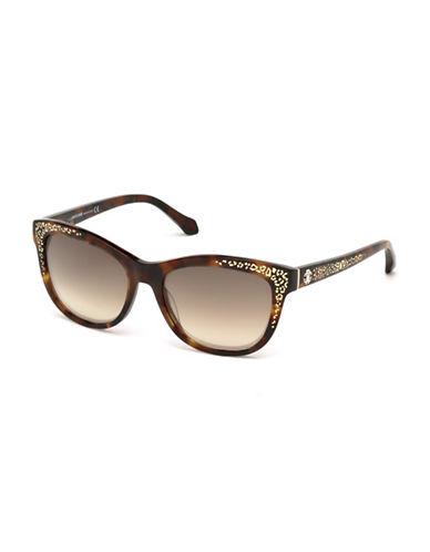Roberto Cavalli 55mm Spot Print Wayfarer Sunglasses-HAVANA-One Size