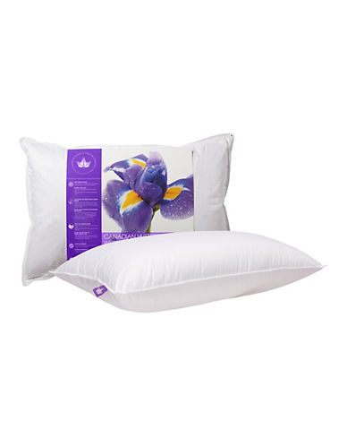 Canadian Down And Feather Firm Support Canadian Hutterite Goose Down Pillow-WHITE-Queen