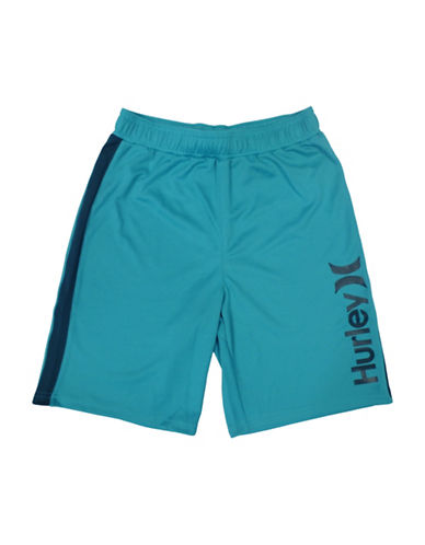 Hurley Logo Mesh Shorts-BLUE-Large