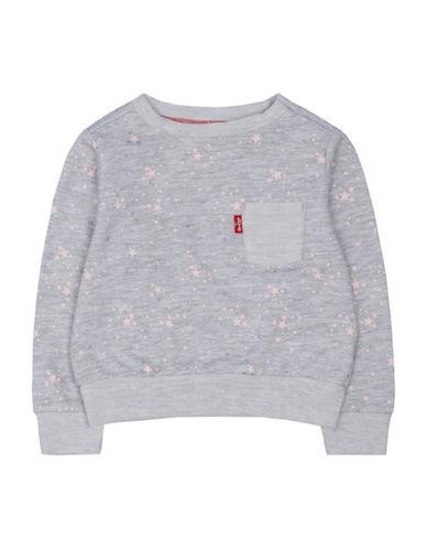 LeviS Star Printed Sweatshirt-GREY-12 Months