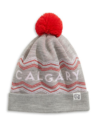 Tuck Shop Co. Calgary Knit Hat-GREY-One Size