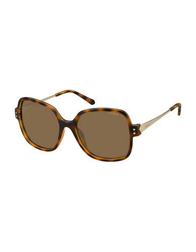Polaroid PLD4046S 55mm Square Sunglasses-HAVANA-One Size