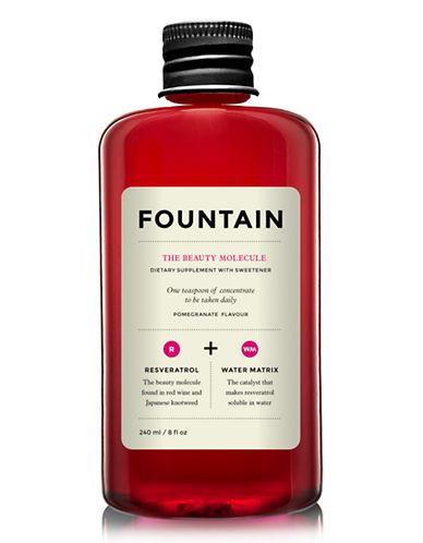 Fountain The Beauty Molecule-NO COLOUR-One Size