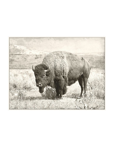 Ren-Wil North Range Wall Art-GREY-One Size
