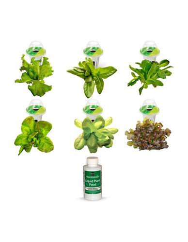 Aerogrow International Inc AeroGarden Heirloom Salad Greens Seed 6-Pod Refill Kit-NO COLOUR-One Size