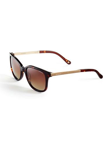 Polaroid Polarized Square Sunglasses-HAVANA/GOLD (POLARIZED)-One Size