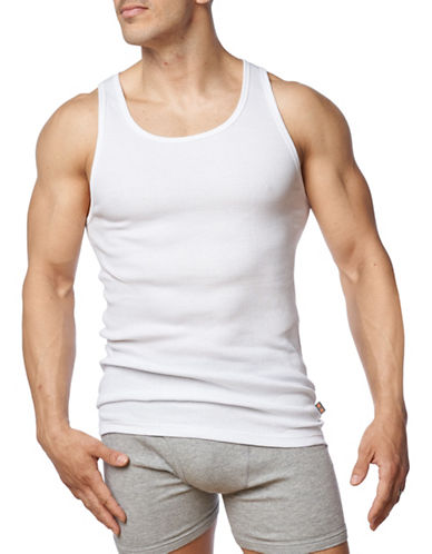 Paul Gray Big and Tall Two-Pack Ribbed Undershirt-WHITE-2X Big