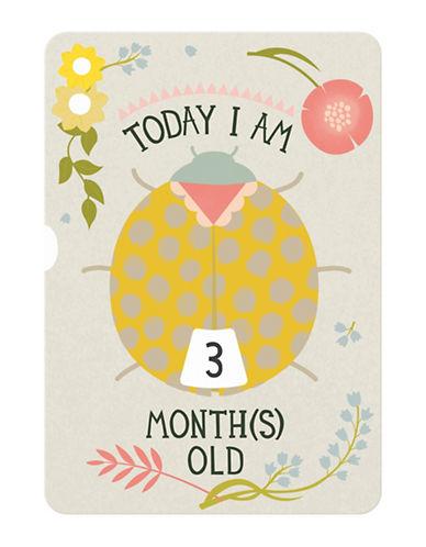 Milestone Cards Baby Ages Turning Wheel Photo Card-MULTI-One Size