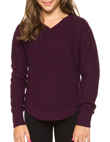 Dex V-Neck Sweater-PURPLE-Small