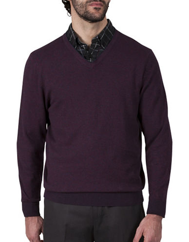 Haggar V-Neck Cotton Sweater-PURPLE-Medium