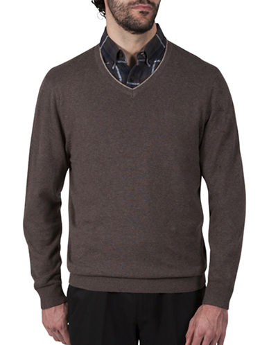 Haggar V-Neck Cotton Sweater-BEIGE-Small