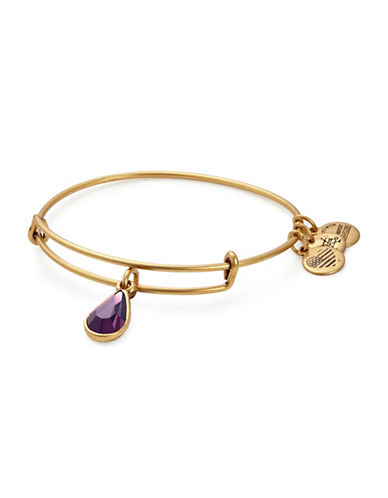 Alex And Ani February Birth Month Charm Bangle With Swarovski Amethyst Crystal-GOLD-One Size
