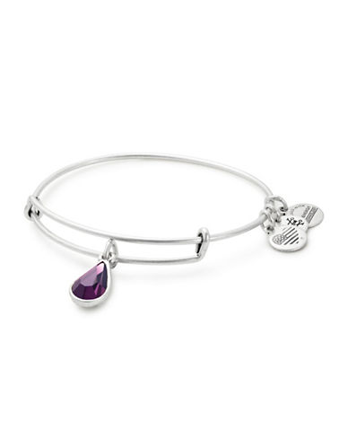 Alex And Ani February Birth Month Charm Bangle With Swarovski Amethyst Crystal-SILVER-One Size