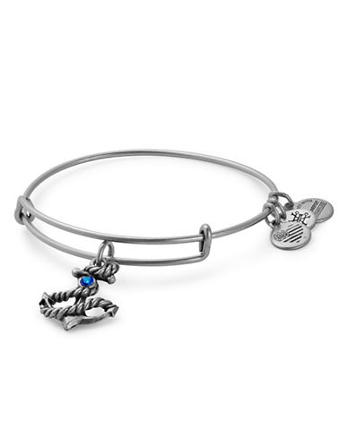 Alex And Ani Anchor Charm Bangle-SILVER-One Size