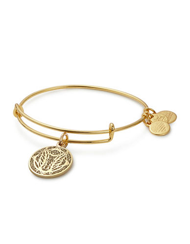 Alex And Ani Godspeed Colour Infusion Charm Bangle-GOLD-One Size