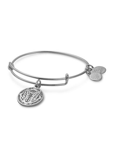 Alex And Ani Godspeed Colour Infusion Charm Bangle-SILVER-One Size