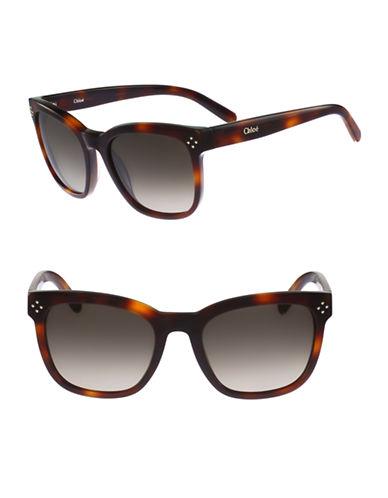 Chloé Boxwood 55mm Square Wayfarer Sunglasses-TORTOISE-One Size
