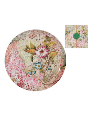 Maxwell & Williams Daydreams Plate-WHITE-20cm 86949751_WHITE_20cm