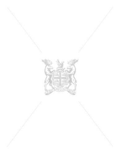 HudsonS Bay Company Silverlake Scarf-NAVY MULTISTRIPE-One Size