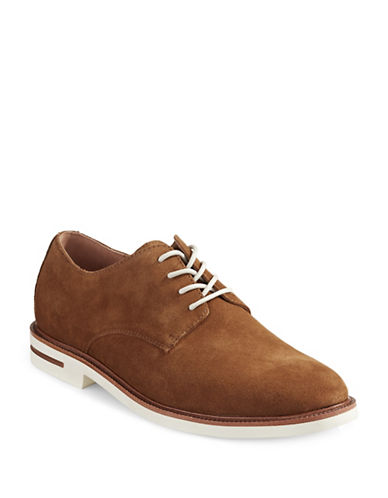 Polo Ralph Lauren Torian Suede Derby Shoes-BEIGE-12
