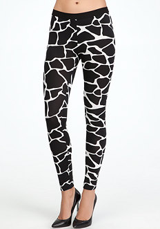 Bold Giraffe Print Leggings at bebe