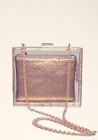 bebe Clear Box Lucite Clutch