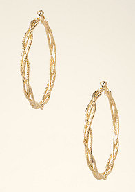 bebe Braided Hoop Earrings