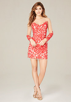 Rosa Embroidered Mesh Dress