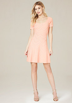 Barb Flared Dress