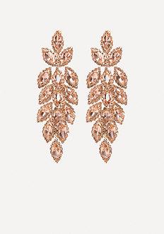 Ornate Crystal Earrings