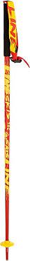 Line Tac Ski Pole