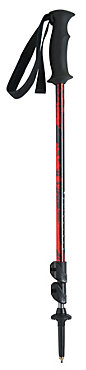 Black Diamond Trail Back Poles