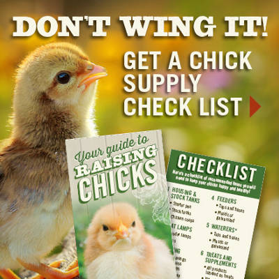 Chick Check List