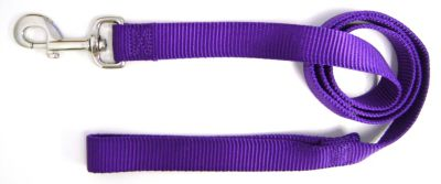 Dog leashes in a variety of colors
