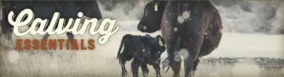 Calving Essentials Banner